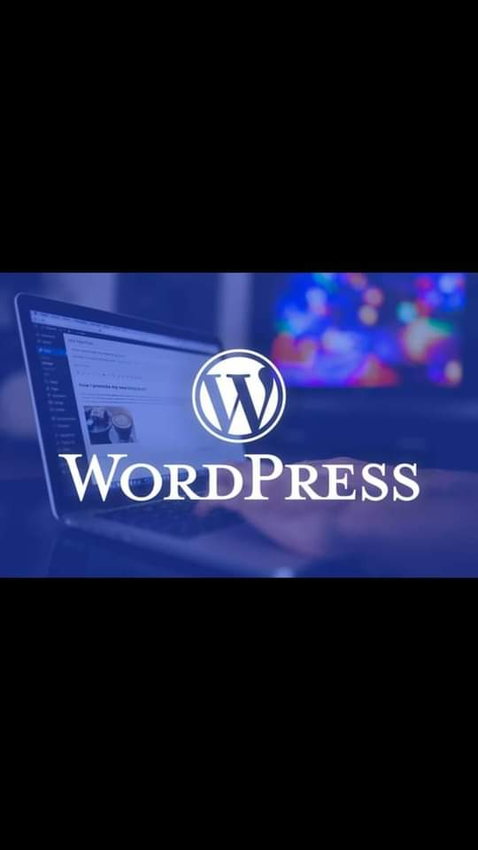 creating, and maintaining your own WordPress websites,